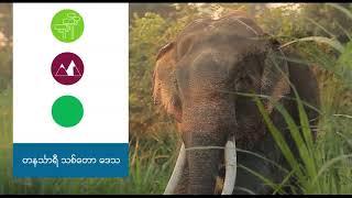 Download Seven Natural Wonders of Myanmar Video