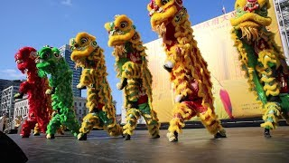 Download 柔功門區德基國術會 Yau Kung Moon Richard Ow - Drum Routine & Lion Dance San Francisco City Hall Video