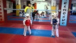 Download Taekwondo geleceğin şampiyonu kırmızı köşe betül t Video