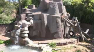 Download Los Angeles Zoo Tour, 2012 Video