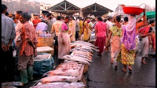 Download Bhaucha Dhakka Fish Market (Ferry Wharf) #BhauchaDhakka Video