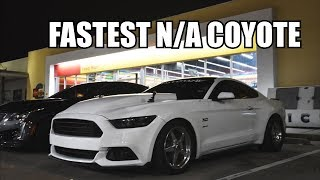 Download 8600 RPM SHIFT!? All Motor Mustang VS The World! Video