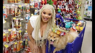 Download Buying My Dog Everything He Touches! Video