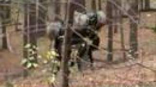 Download Boston Dynamics Big Dog (March 2008 Nightmare Remix) Video