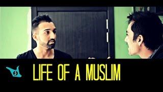 Download Life of a MUSLIM - SHAM IDREES Video