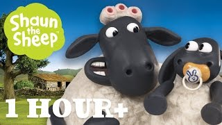 Download Những Chú Cừu Thông Minh - Tập 04 [một giờ] Video