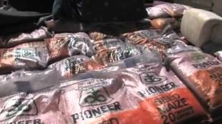 Download FAO driving innovation in agriculture assistance - E-voucher for inputs in Zimbabwe Video