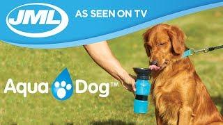 Download Aqua Dog from JML Video