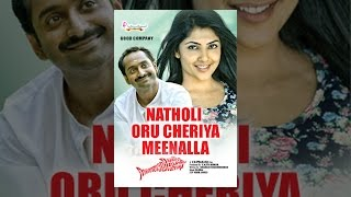 Download Natholi Oru Cheriya Meenalla Video