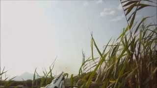 Download Duck hunting 2013-14 N-M Benelli M2 camo Video