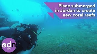 Download Plane submerged in Jordan to create new coral reefs Video