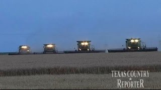 Download Davis Family Wheat Farm (Texas Country Reporter) Video
