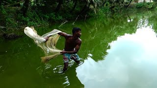 Download Net Fishing   Catching Fish With Cast Net   net fishing in the village (Part-29) Video