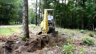 Download Mini excavator tree clearing Video