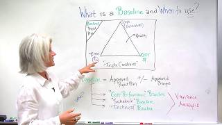 Download What Is a Project Baseline and When To Use It? Video