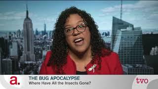 Download The Bug Apocalypse Video