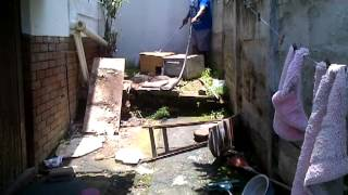 Download 2.5 meter Black Mamba caught at KZN home (South Africa) by Lee Naidoo Video