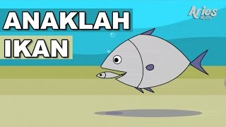 Download Lagu Kanak-Kanak Alif & Mimi - Anaklah Ikan (Animasi 2D) Video