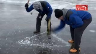 Download Pływanie pod lodem Na Narwi w Łomży | naszalomza | Video