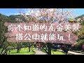 Download 【Vlog】搭公車這樣玩!不一樣的九金美景都在這!(九份、金瓜石、報時山、陰陽海) Video
