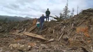 Download Vu du Ciel - S01E01 - 8/13 - La déforestation au napalm - Tasmanie Video