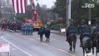 Download 'Fallen Rider' horse Video