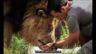 Download Kevin Richardson - Dangerous Companions Video