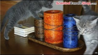 Download Candle Burning Safety Tips Video