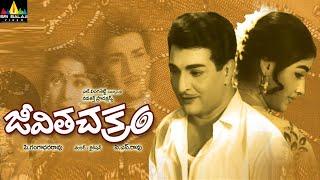 Download Jeevitha Chakram Telugu Full Movie | NTR, Vanisri, Sarada | Sri Balaji Video Video