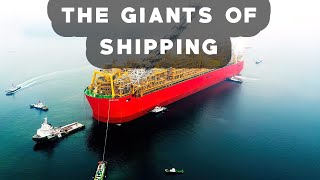 Download THE BIGGEST SHIPS In The World Video