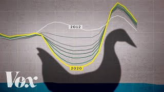 Download The 'duck curve' is solar energy's greatest challenge Video