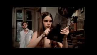 Download The BROOKE SHIELDS Collection pt. 1 1960s-1979ish Video