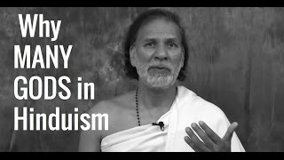 Download Hinduism: Why So Many Gods? The Deva & Devis of Hindu Culture (What is Hinduism?) Video