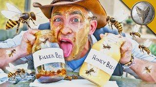 Download Is KILLER BEE Honey Dangerous?! Video