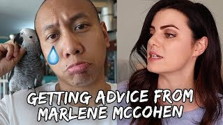 Download How to Say Goodbye to a Bird (Ft. Marlene McCohen) | Vlog #350 Video