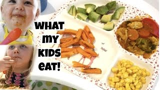 Download WHAT MY KIDS EAT IN A DAY! | KERRY CONWAY Video