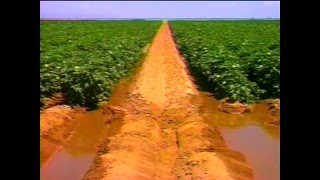 Download 027E Surface Irrigation Video