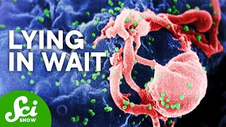 Download 6 Sleeper-Agent Pathogens That Can Make You Sick Video