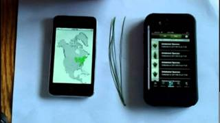 Download MyNature Tree App vs Leafsnap Video
