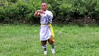Download Shaolin kung fu basic training 1 Video