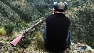 Download Film 25: Sako A1 .223 Video
