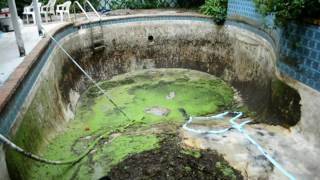 Download Time lapse of turning a swamp into a pool Video