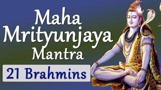 Download Vedic Chanting| Maha Mrityunjaya Mantra| Vedic Hymns by 21 Brahmins Video