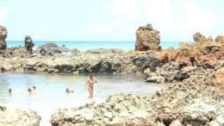 Download CT K21 - VOLTA AO BRASIL 36 - PRAIA DE NUDISMO DE TAMBABA (PB) - PARTE 1 Video