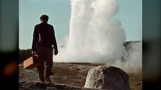 Download Rediscovering Yellowstone - Tom Brock Video