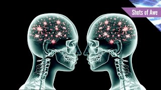 Download What Is Brain Coupling? Video