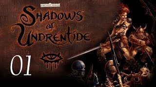 Download Neverwinter Nights: Shadows of Undrentide - 01 - Introduction Video