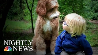 Download Oregon Foster Child's Friendship With Dog Is Viral Internet Sensation | NBC Nightly News Video