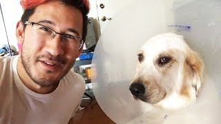 Download Chica Had Surgery Video