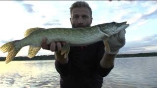Download Makšķerē ar Olti (10.08.2016.) Video